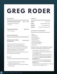 Best Resumes 2017 Best Resume Examples 24 Best Cv Examples 24 To Try 12