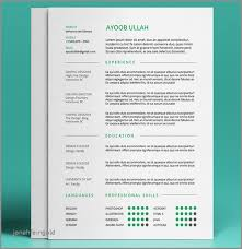 Best Resume Templates 2017 Adorable 28 Page Resume Template 20287 Elegant Best Free Resume Templates In