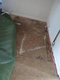 creaky floorboards chipboard
