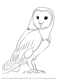 Small Picture How Do You Draw A Owl To Owl Step 0png Coloring Pages Maxvision