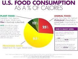 Healthy Eating Percentages Pie Chart Healthy Diet Pie Chart Futurenuns Info