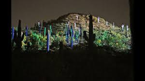 Desert Botanical Garden Light Display 2019 Electric Desert At Desert Botanical Garden In Phoenix Arizona