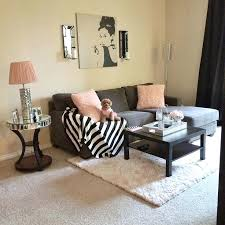 Decoration Ideas For Living Room In Apartments Decoration Ideas For Gorgeous Apartment Decorating Ideas Living Room