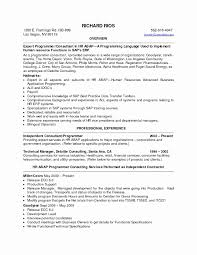 Skills And Abilities Resume Examples Sample Of Qualifications Summary On A Resume Fresh Summary 89