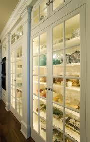 pantry rain glass doors with light inside is a great idea