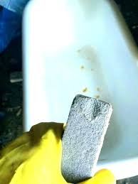 rust stains in bathtub pimple how to clean rust stains from fiberglass bathtub