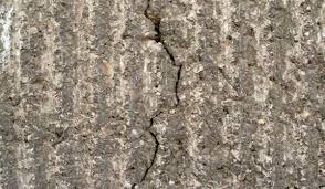 A fissura se dá, de maneira mais objetiva, na argamassa, elemento menos resistente do conjunto. O Que Causa As Rachaduras No Predio E Quando Elas Sao Um Problema