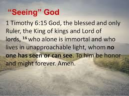 Image result for 1 timothy 6:16