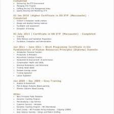 Professional Resume Templates 2015 Resume For Retired Person Sample College Student Resume Examples