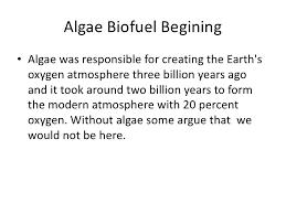 algae based biofuels 8 algae biofuel