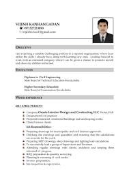 vijesh resume pdf