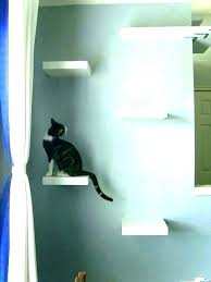 cat steps for wall cat steps for wall stairs on shelves wall mounted cat furniture inspirational