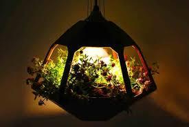cool lighting fixtures. interesting fixtures ten cool plantable light fixtures for lighting