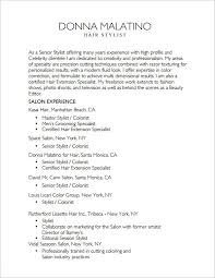 Master Hair Stylist Resume PDF Template