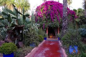 Resultado de imagem para le jardin majorelle marrakech