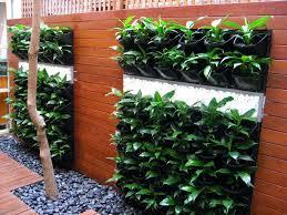 Vertical Garden Design Ideas New Design Ideas