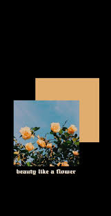 Yellow flowers, Iphone wallpaper yellow ...