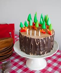 Easy Diy Planes Fire Rescue Birthday Cake With Forest Trees And