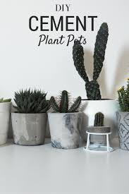 DIY cement planters and pots