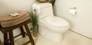 elongated bowl toilet dimensions. toilet high tech bowl zep acid cleaner end one elongated dimensions