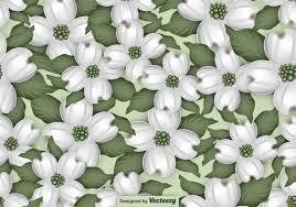 Motif Pattern Best Decoration
