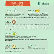 What To Feed 6 Month Old Baby