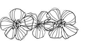 tumblr transparents black and white flowers. Fine Tumblr Flowers Overlay And Transparent Image With Tumblr Transparents Black And White Flowers T
