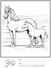 Small Picture Coloring Pages Baby Animals And Mothers Free coloring pages of