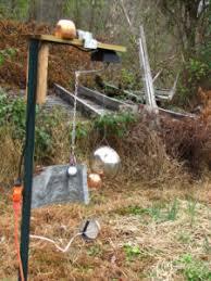 deer repellent for gardens. Homemade Deer Deterrent Repellent For Gardens T