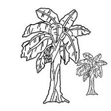 Small Picture sunflower in garden line drawing Google Search Church