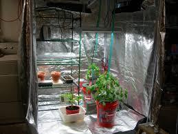 basement grow room design. 41 Best Marijuana Growing Videos Images On Pinterest Killing Basement Grow Room Design