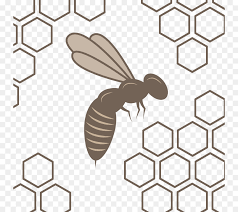 Beehive Pattern Simple Honey Bee Honeycomb Beehive Pattern Vector Bee Nest Png Download