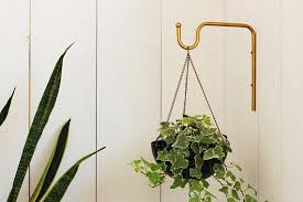 wall plant hanger hanging plant hooks