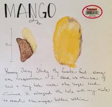 essay on my favourite fruit short and simple essay on my favourite  my love affair mangos eva varga mango seed