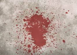 Blood Stain Patterns Simple Decorating Ideas