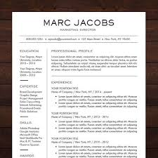 Modern Resume Design Mesmerizing Modern Resume Template CV Template For Pages Word Professional