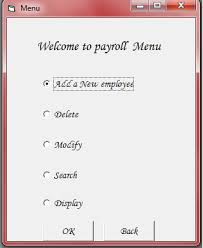 basic personal information form simple payroll system on visual basic archies way