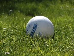 Image result for ball in a field