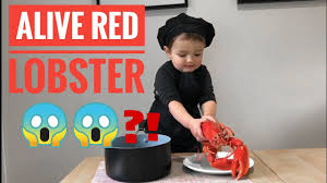 Easy Lobster bisque with Sami🦞 - YouTube