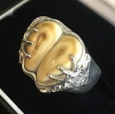 elk ivory necklace elk ivory ring