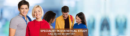 Statistics Help   Dissertation Statistical Consulting   Consultant Dissertation Help