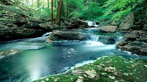 49+] Nature Pictures Wallpaper Free on ...