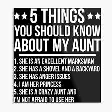 Funny Crazy Aunt Niece Gift T Shirt Metal Print
