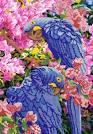 Попугай бисером вышивка