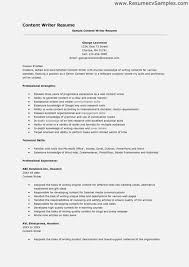 Editor Resume Samples Seven Moments To Remember Invoice And Resume Template Ideas