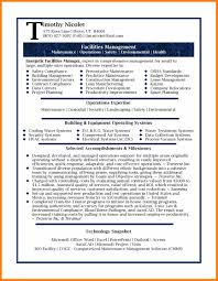 Resume Examples Professional Good Resume Format