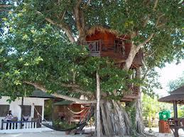 Koh Phangan Hotel Reviews \u2013 Best Koh Phangan Tree House