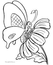 I think this coloring page is suitable for grown ups and older kids too. Butterfly Coloring Pages Sheets And Pictures