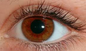Imagini pentru Boli ale ochiului