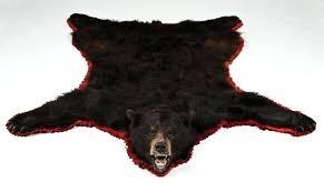 bear skin rugs bear skin rugs without head